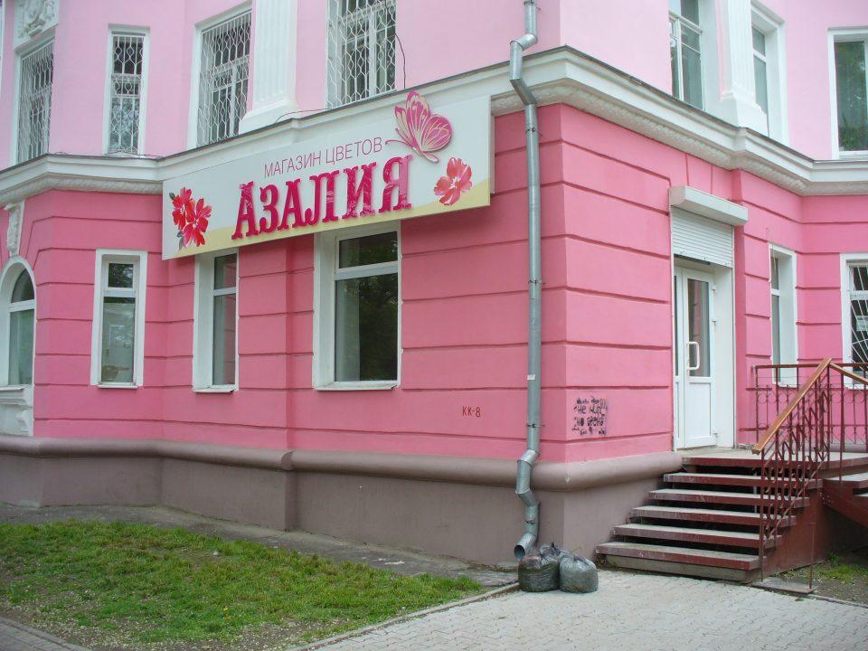 Азалия, магазин цветов